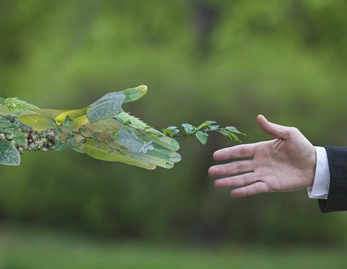 NachhaltigkeitVermittlerGrueneRente